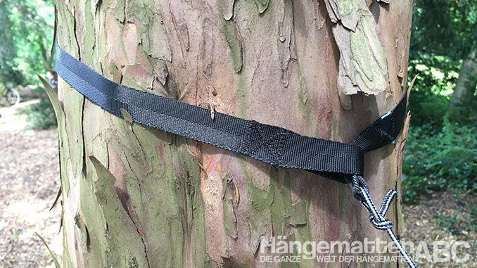 correas de árbol hamaka